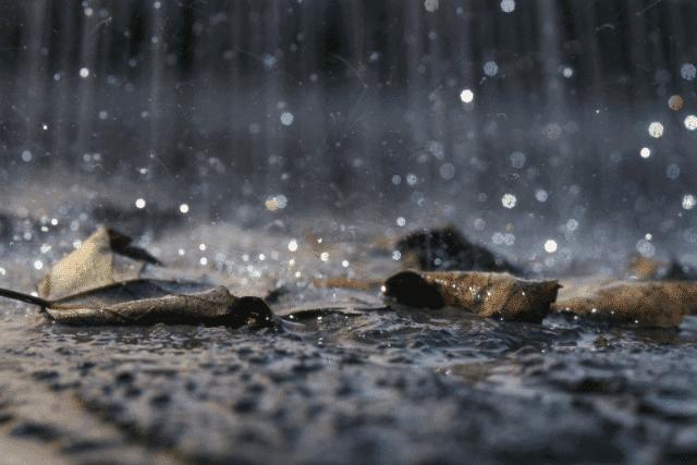 אבחון ואיתור חדירות מי גשמים – מתכוננים לחורף